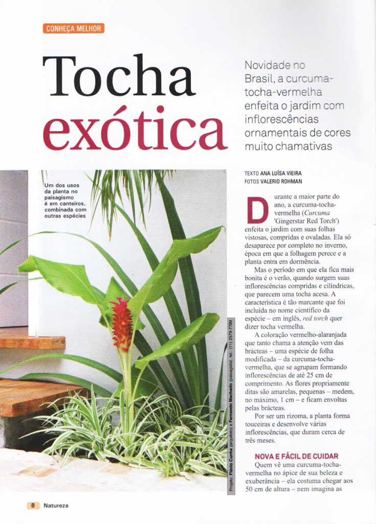 22-revista-natureza-ed-304-flavio-machado-arquitetura-paisagismo-1